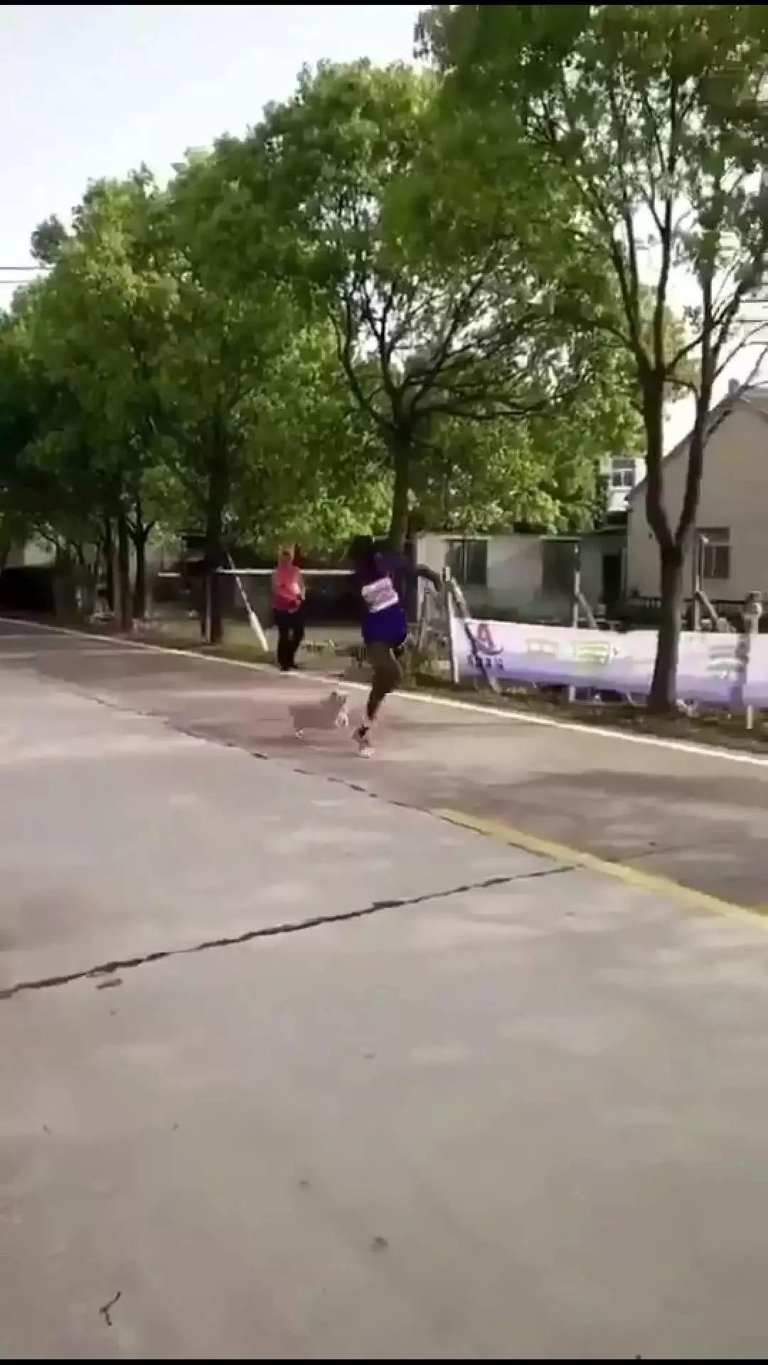 【辟谣】别再传狗撵选手的视频了!我大宜兴才不会出现这种状况!